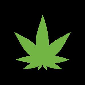 Medical Marijuana-Cannabis-Hemp-Tours